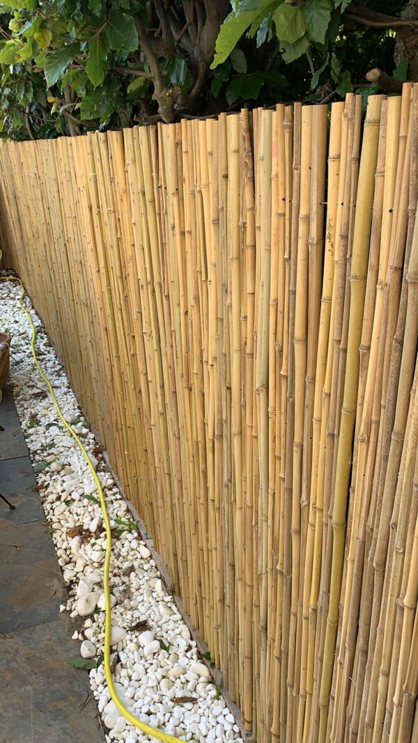 Bamboerolscherm Dalian